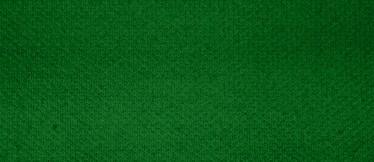 100% Baumwolle - green